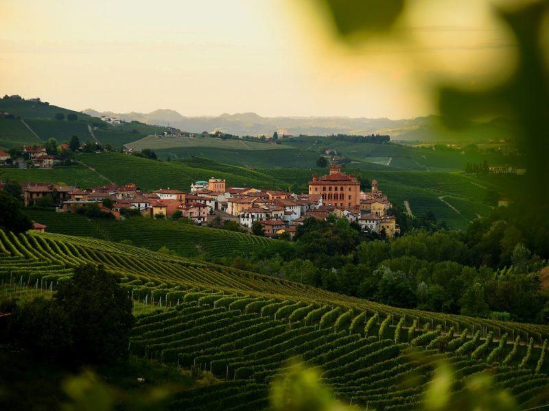 wijngaarden Barolo (dorp & kasteel)
