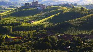 wijngaarden Grinzane (Kasteel)