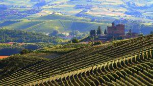 Kasteel Grinzane en wijngaarden