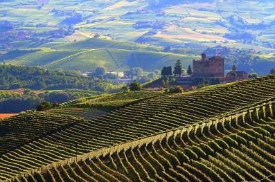Kasteel Grinzane en wijngaarden Langhe