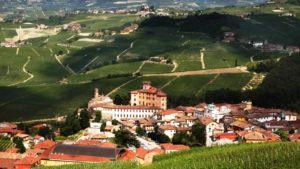 Stadje Langhe kasteel & wijngaarden