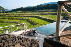 Zwemabd en wijngaarden Barone Villagrande