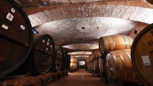 Wijnkelder Cantina Langhe