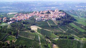 wijngaarden en Stadje Langhe Piemonte