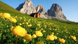Dolomieten Reis Italië