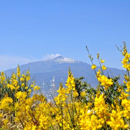 Uitzicht Etna Ginestre