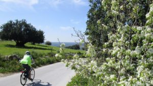 zuid-oost Sicilie fietsreis lente