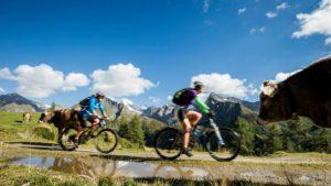 Mountain bike - Luxe en actief reis zuid-tirol
