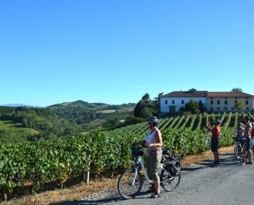 E-bike langhe wijngaarden fietsreis